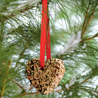 - FEED THE BIRDS Supplies—3/4 cup birdseed, 3 tablespoons flour, 6 tablespoons water, Heart-shaped cookie cutter, Vegetable oil, Foil, Cookie sheet, Drinking straw, Ribbon. Instructions—Mix together birdseed, flour, and 2 tablespoons water. Spray or wipe the cookie cutter with oil and place it on a foil-covered cookie sheet. Pack the mixture into the cutter, inserting half a straw near the top to create a hole for hanging. Bake the biscuit (with the straw) in a 170-degree F oven until the biscuit is hard, about one hour. Let it cool. Makes two 3-inch biscuits or a single 4-inch biscuit. Remove the straw, thread a ribbon through the hole, and hang outside in a sheltered spot. Great gift for birds and bird-loving friends! Makes a great valentine! Teach the Grands about these 15 common birds.