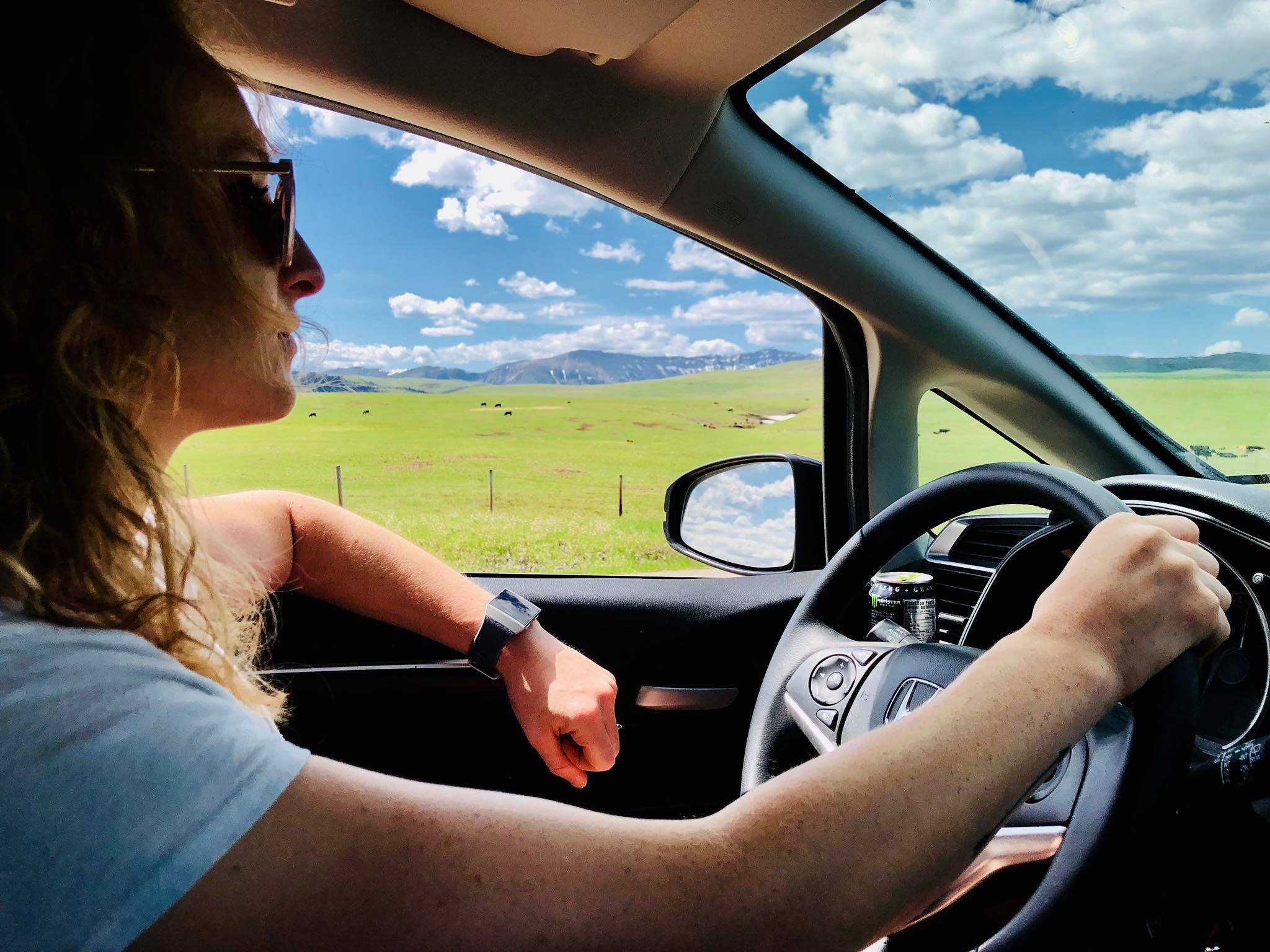 driving dunnebells.jpg