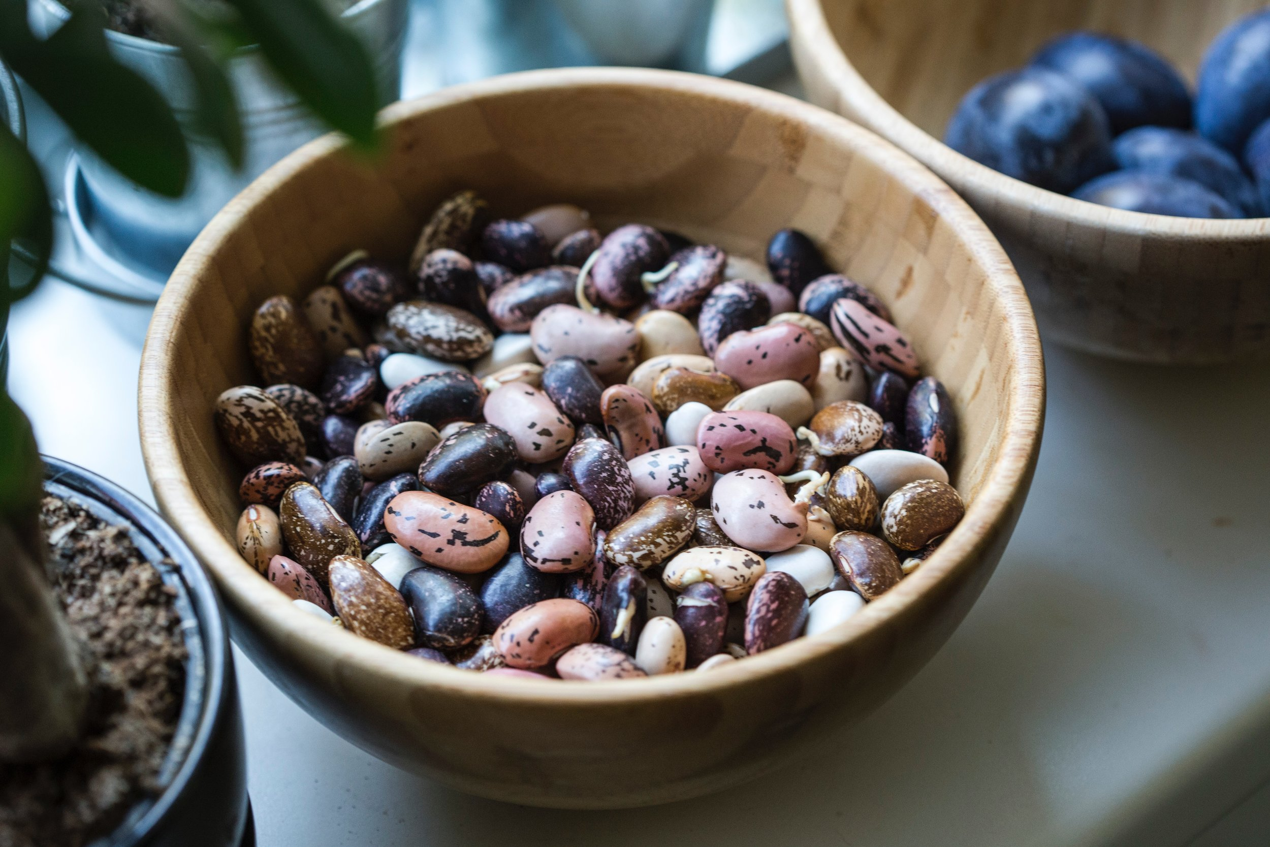 beans dunnebells.jpg