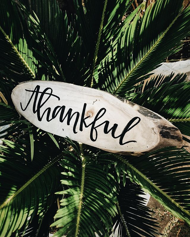 Taking time out to give thanks for all the blessings and lessons. Happy Thanksgiving. . . . #thanksgiving #freedom #blessed #letgotogrow #outsourcing #virtualassistant #onlinebusinsess #launch