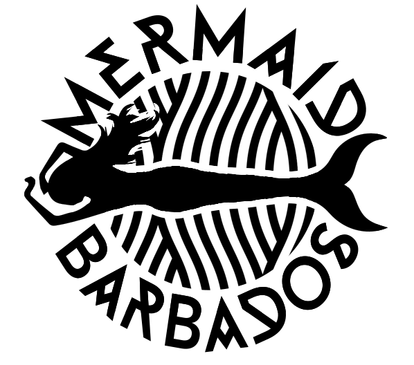 mermaid logo screen grap.PNG