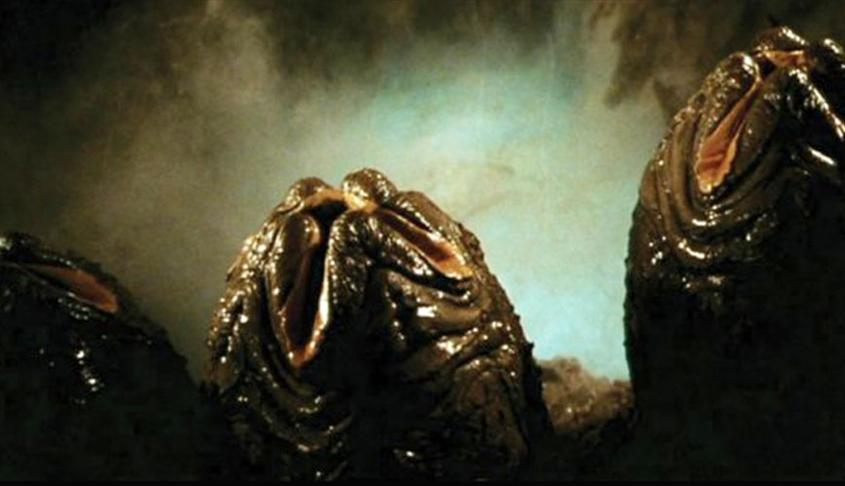 alien eggs.jpg