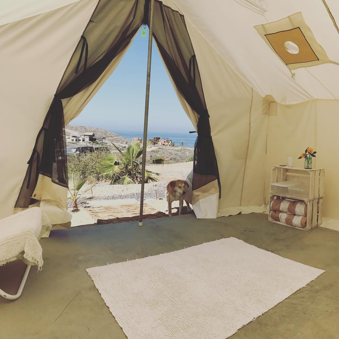 Glamping - Your walls are canvas. Your bed is cozy. You have all the amenities of our indoor rooms, at our most affordable price. Tent accommodations have a shared bathroom with a gorgeous, private outdoor shower. Desert & ocean views.+SOLD OUT+