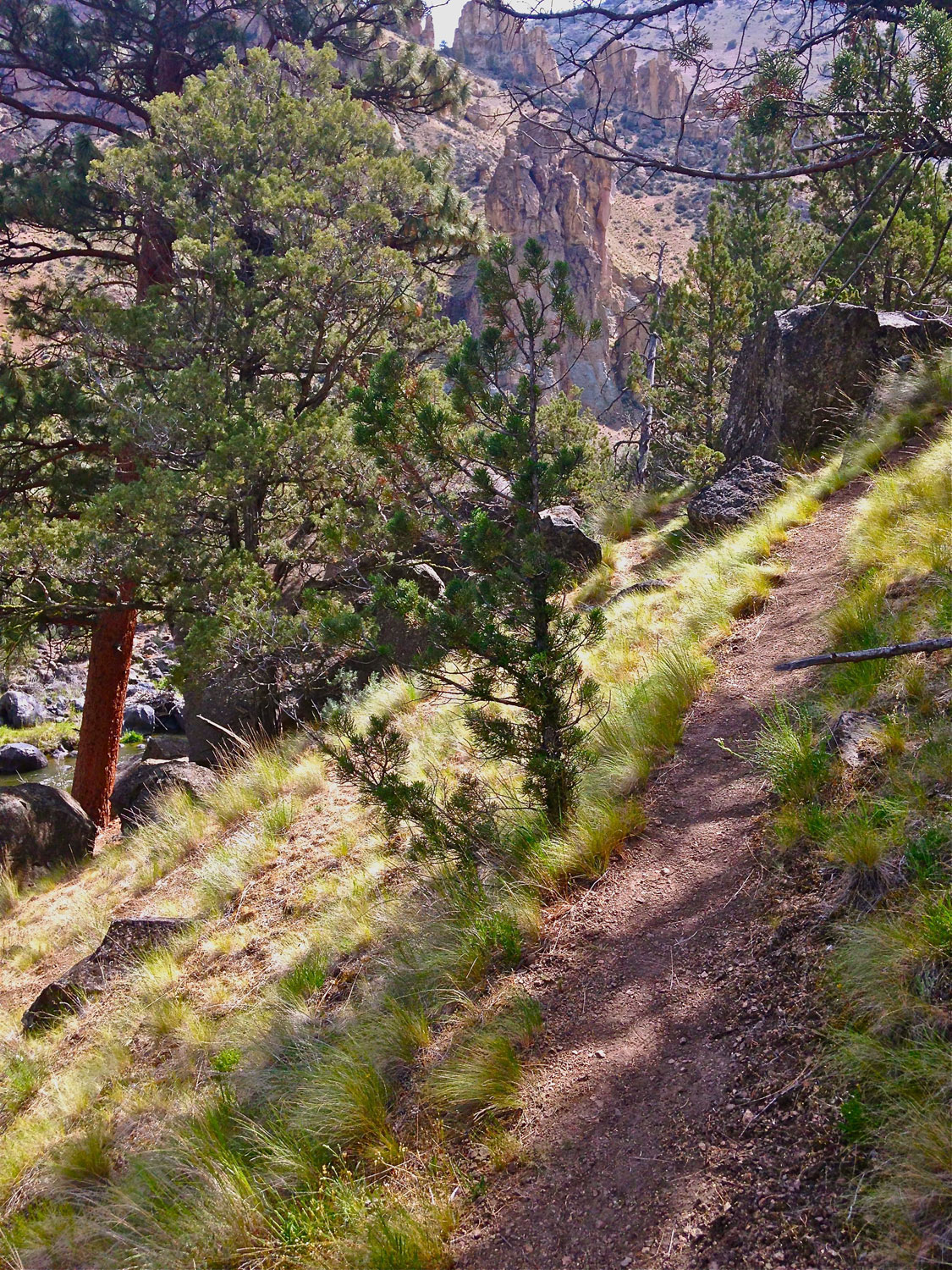 Alternate way up and out of Smith Rock State Park on the Homestead Trail.