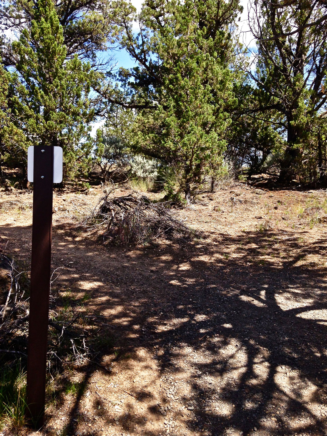 The intersection of the Rope-de-Dope Trail with the Rim Rock Trail. Go right to the campground or left back to the parking area at Smith Rock State Park.