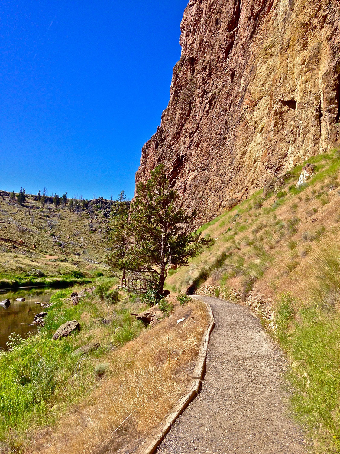 Make a left at the bridge to head out on the River Trail at Smith Rock State Park.