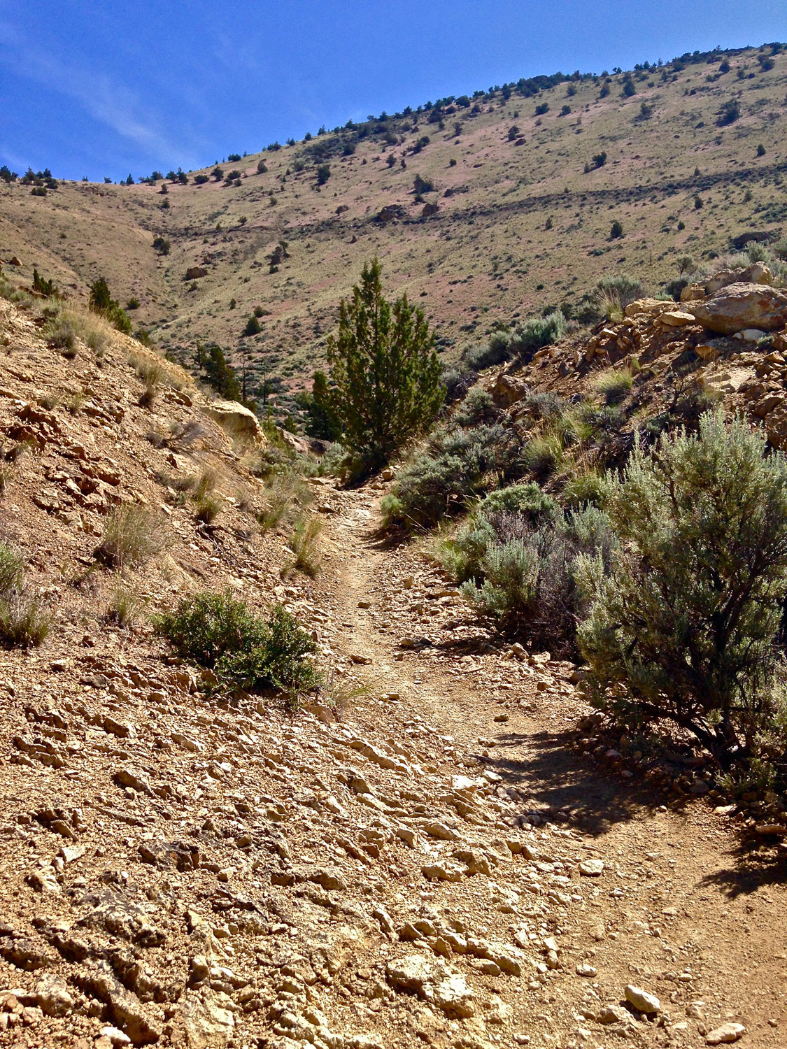 More steep scree signals the end to the narrow Burma Road Trail still in Smith Rock State Park boundaries.