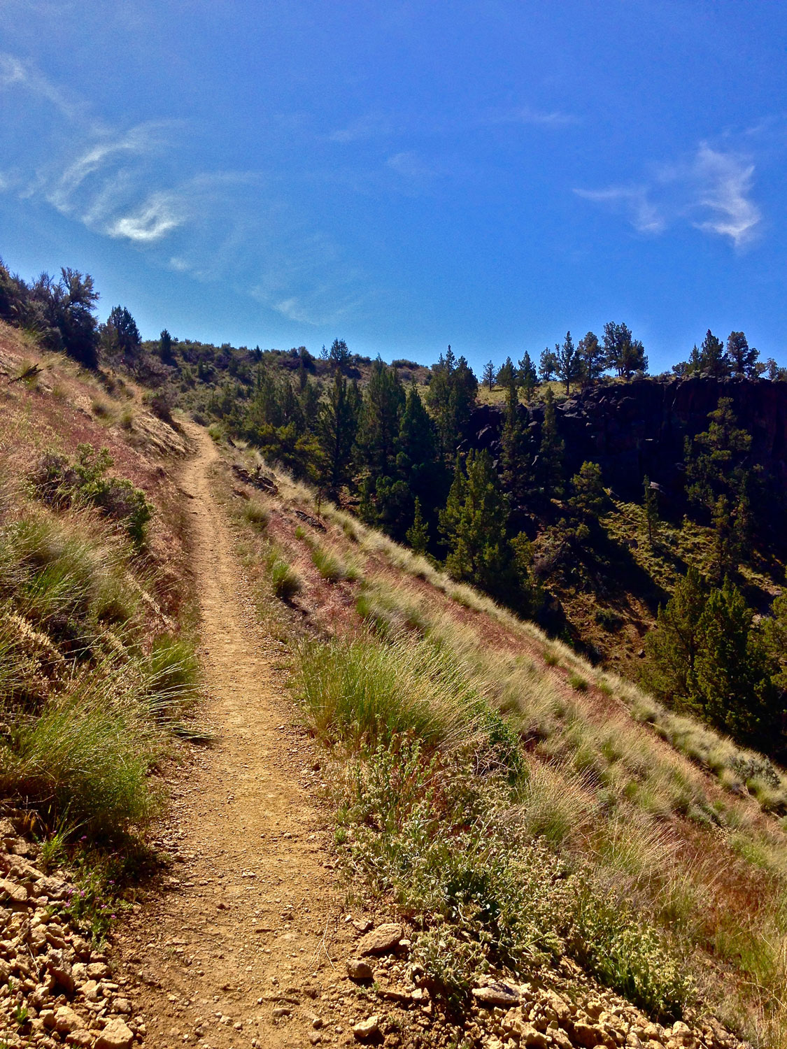 The Burma Road Trail at Smith Rock State Park is still a narrow scree path in the park boundaries.