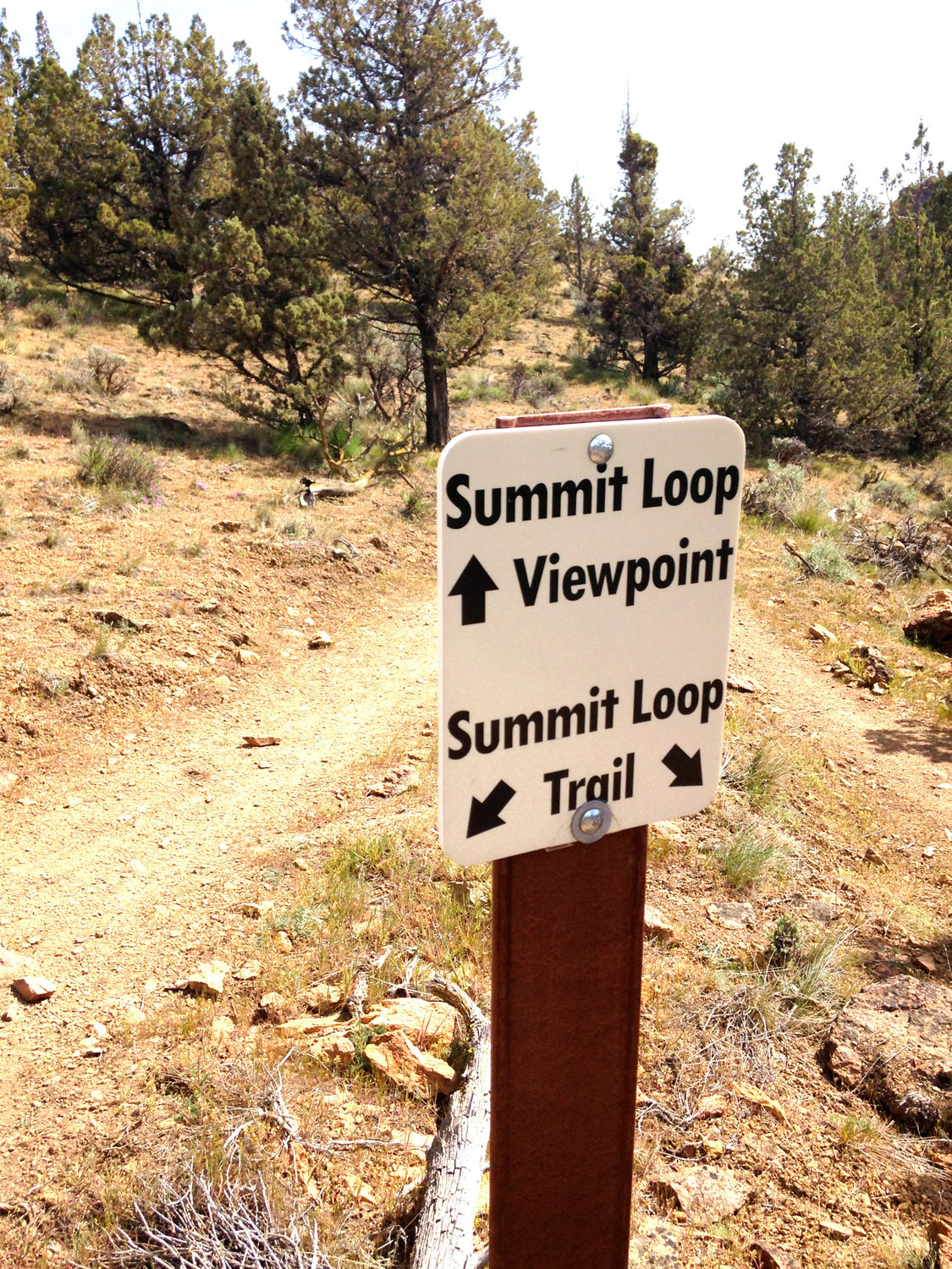 A quick detour to check out the viewpoint on the Summit Trail at Smith Rock State Park is definitely worth it.