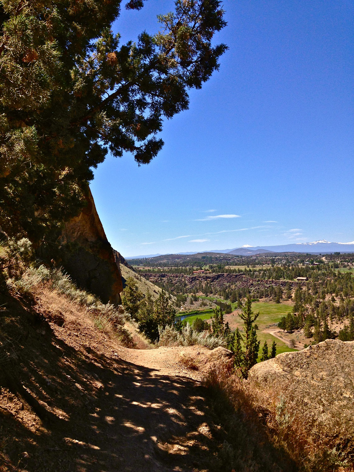 Heading down the Mesa Verde Trail back toward the main part of Smith Rock State Park.