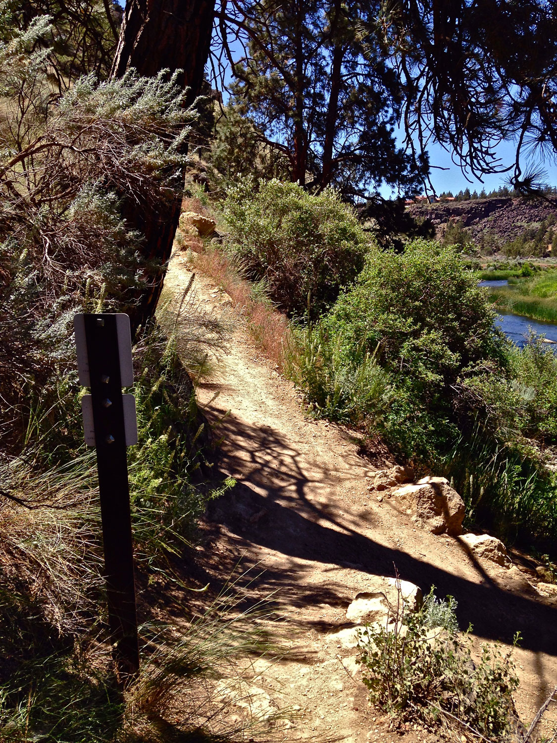 Finally back at the first junction of the Mesa Verde Trail at Smith Rock State Park where a left on the River Trail takes you back to the bridge.