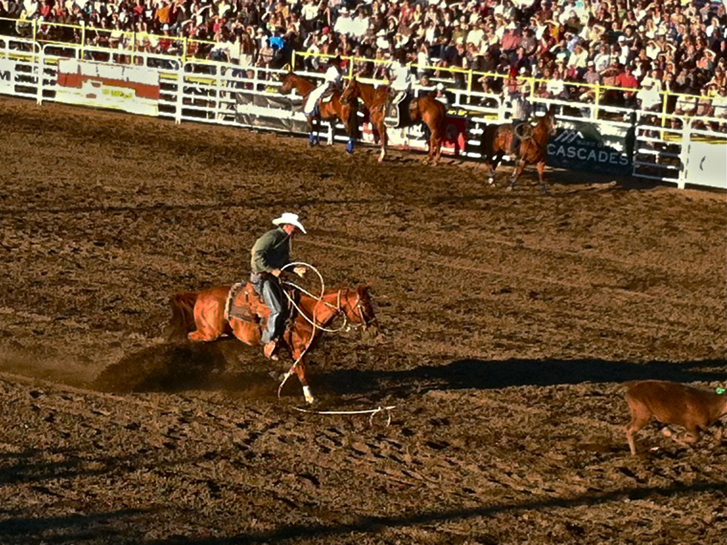 Competitors at the Sisters Rodeo