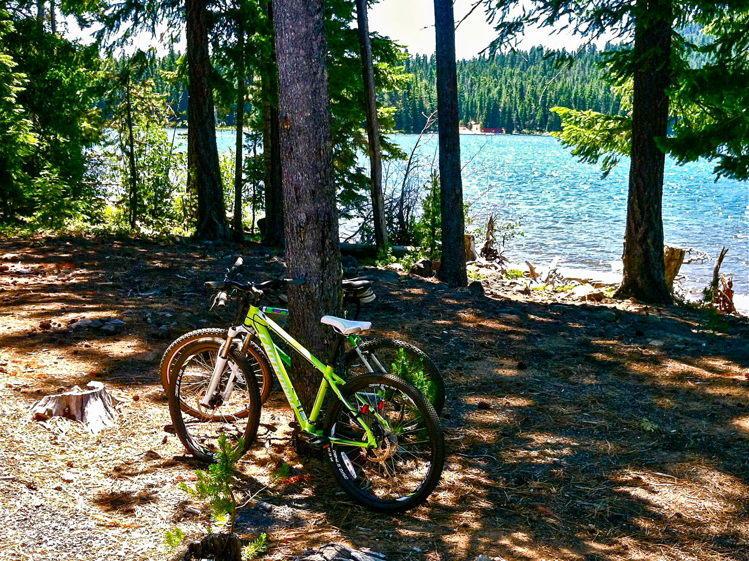 Mountain biking at Cultus Lake