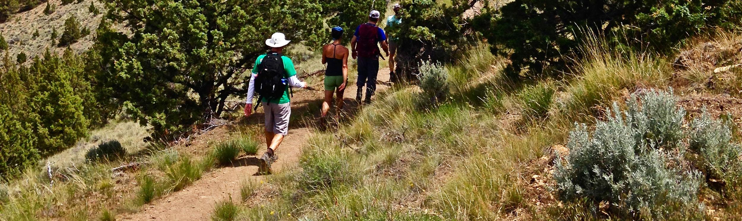 find a - trail