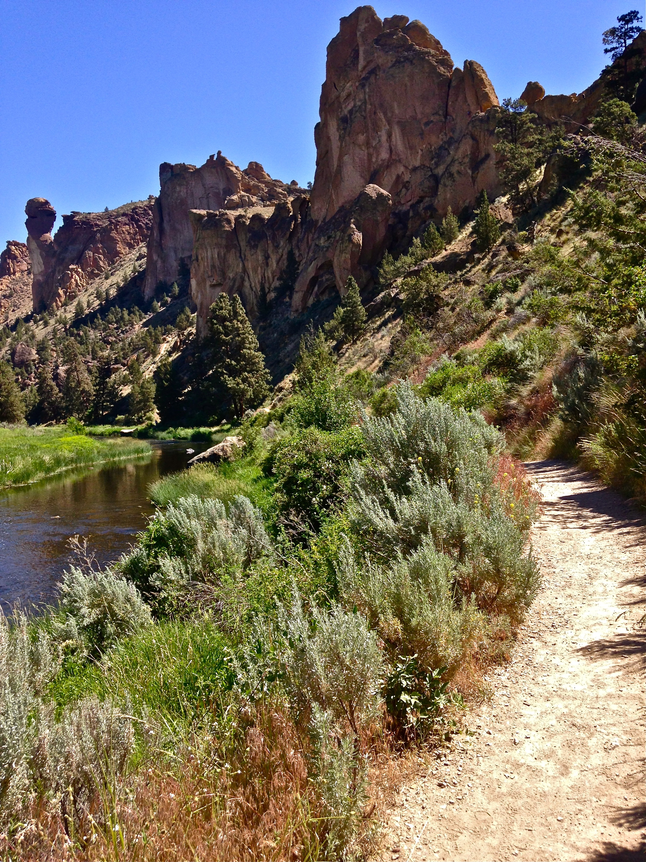 River Trail with Monkey Face in the distance at Smith Rock State Park
