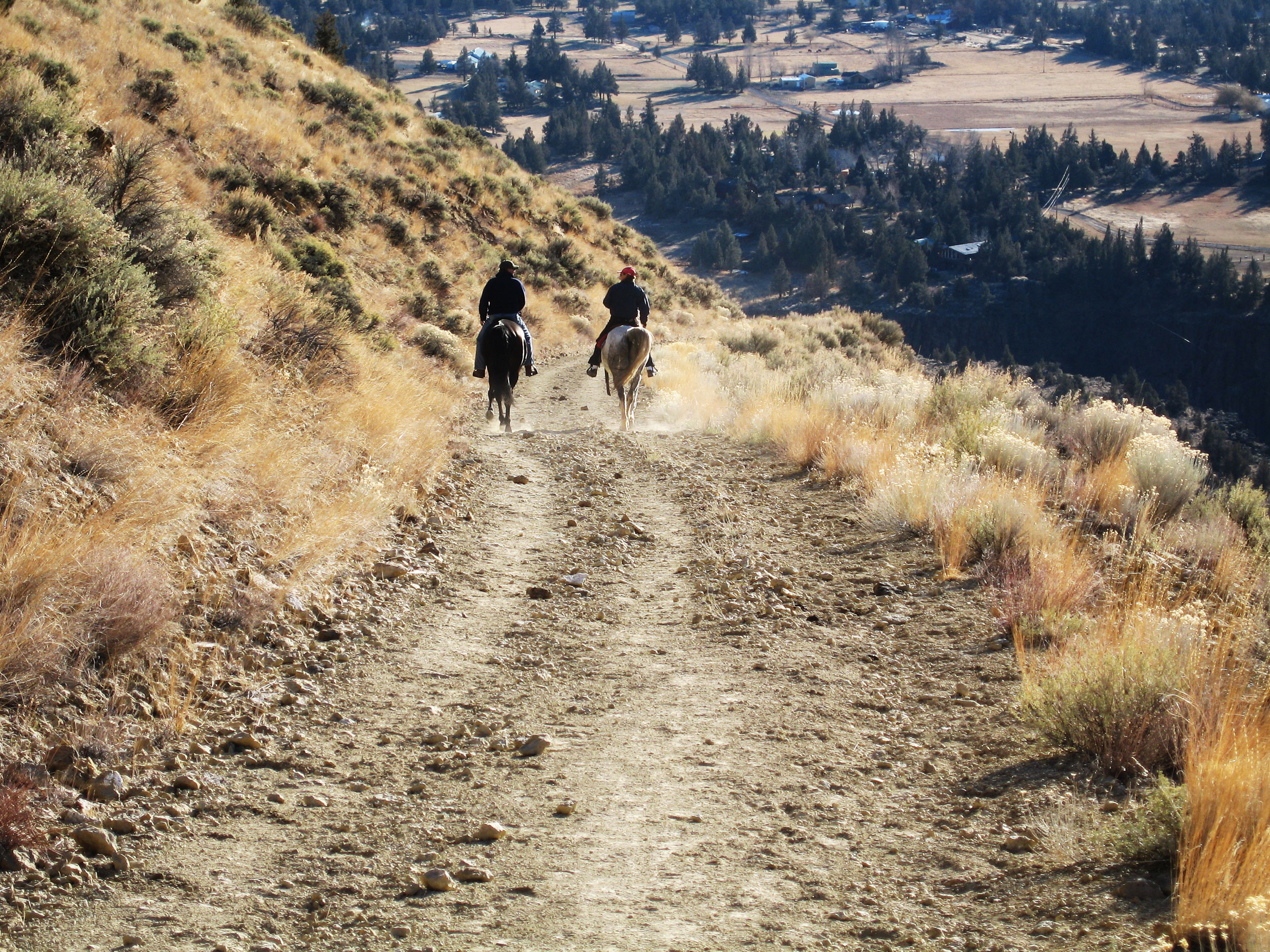horseback riders on the Burma Road just outside Smith Rock State Park
