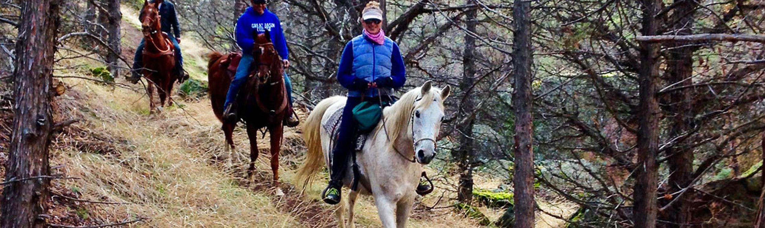 rv lot to - canyon trail