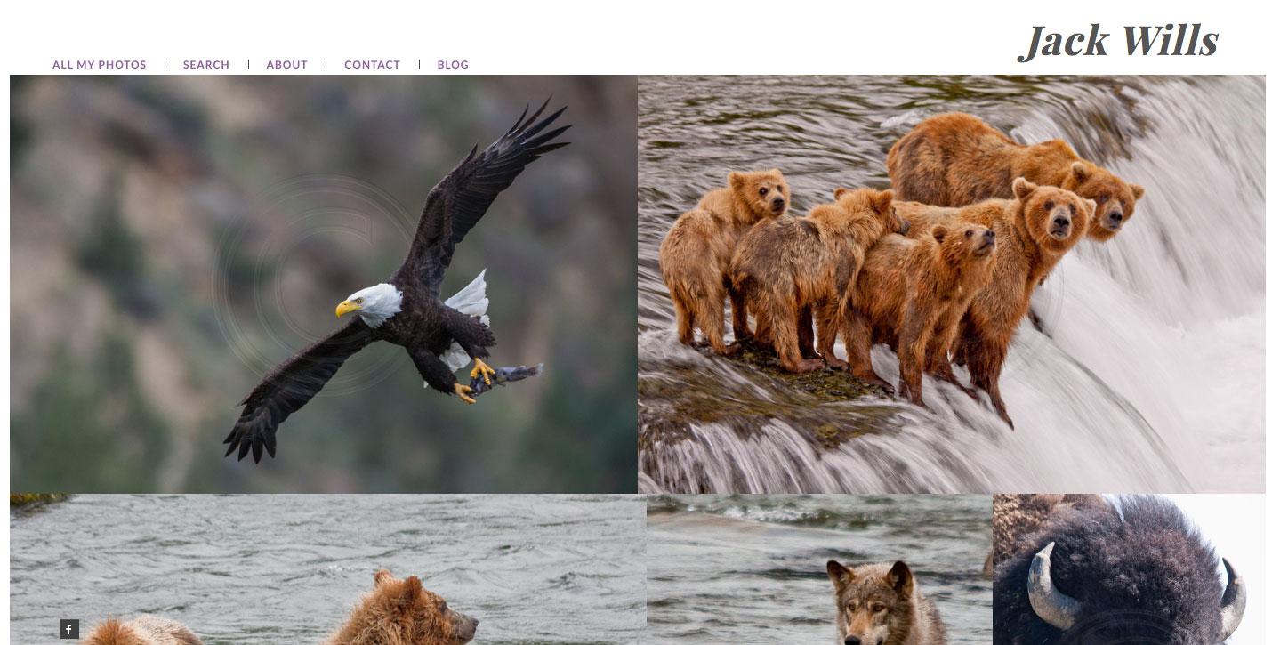 screenshot of Jack Wills Photography website