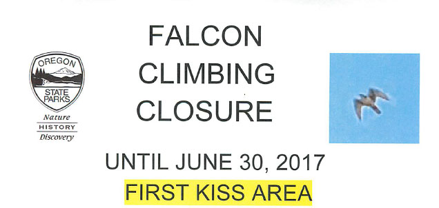 FalconclosureFirstKiss.jpg