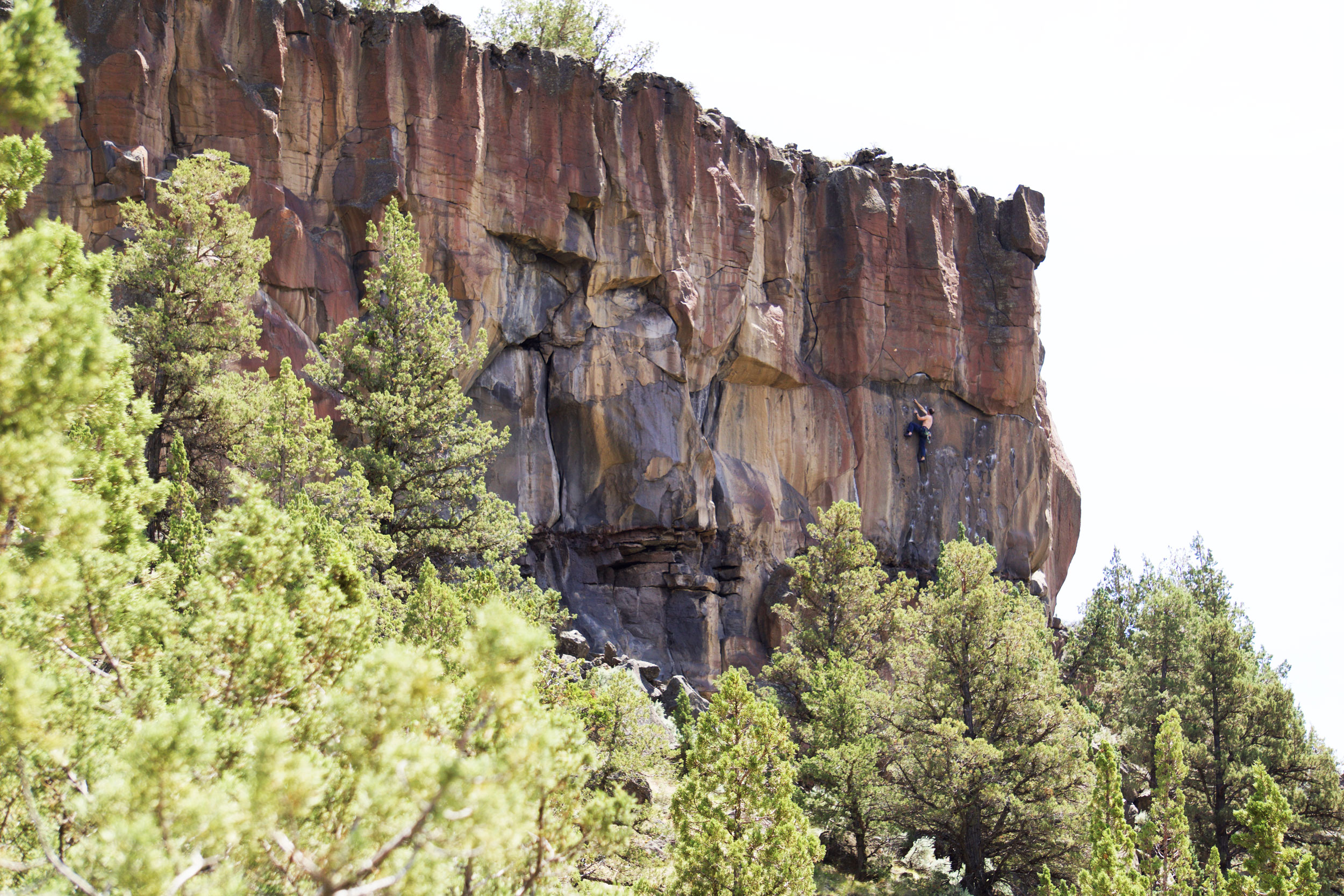 climber on the Reproductive Wall of the Student Wall in The Gorge of Smith Rock State Park