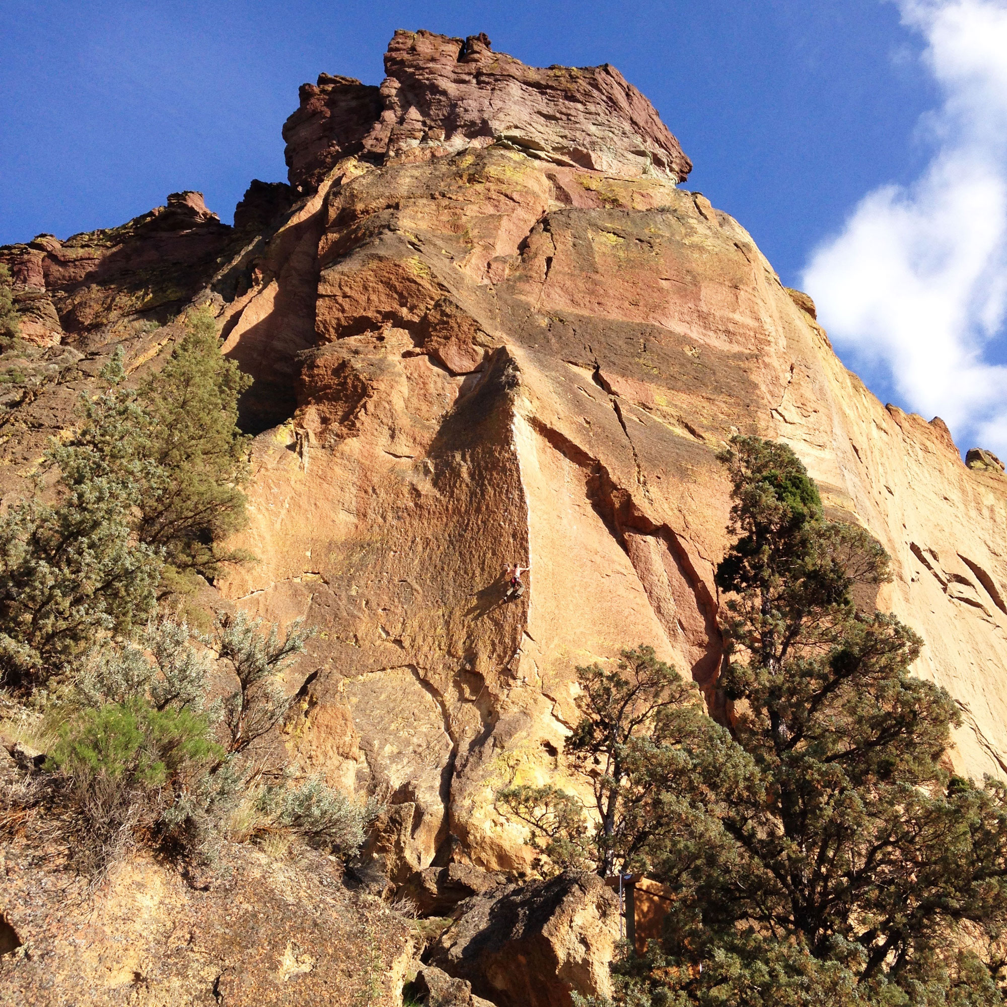 climber on Mesa Verde Wall of the West Side Crags at Smith Rock State Park