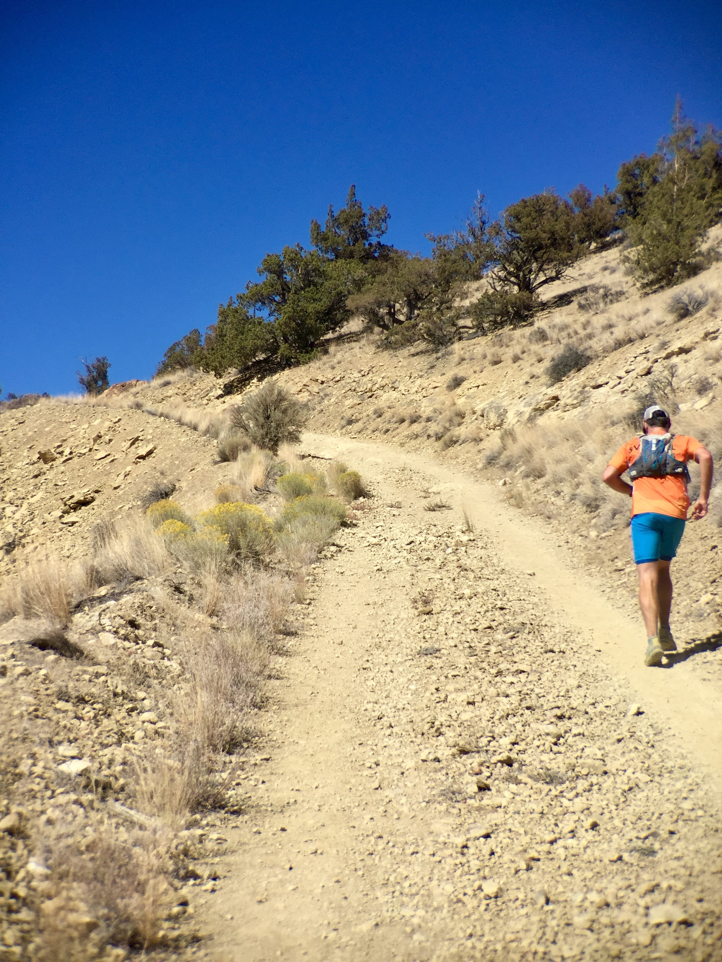 trail runner  on the  Burma Road  at Smith Rock State Park