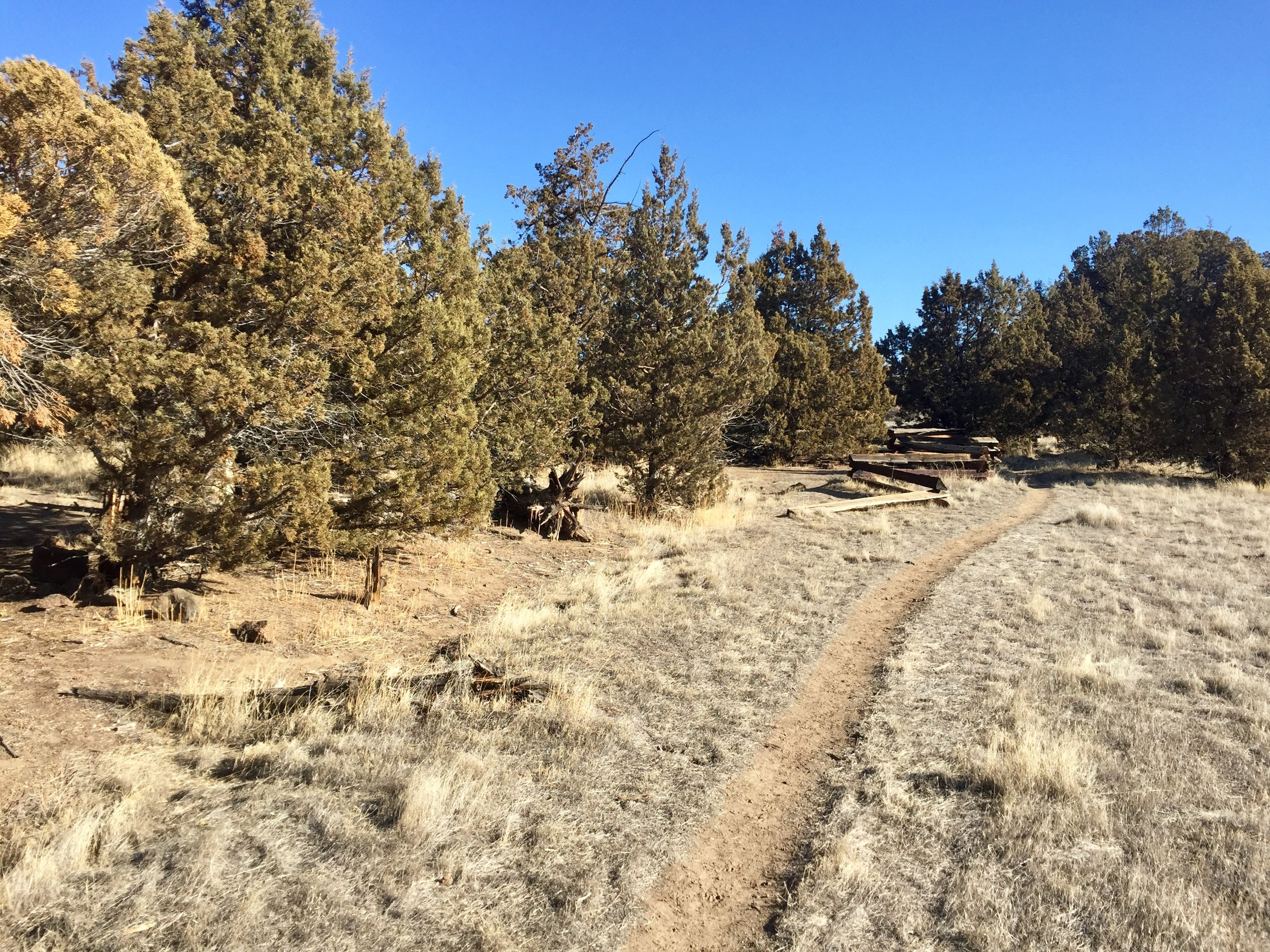 """The extension of the Rim Rock Trail from the South Point Area skirts the rim of the park property and will most likely have a few """"lollipops"""" or viewpoint trails to see the canyon below. Click to enlarge."""