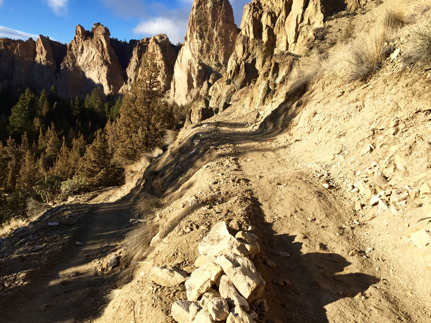 Continuing up the switchbacks to Burma Road off the Wolf Tree Trail.