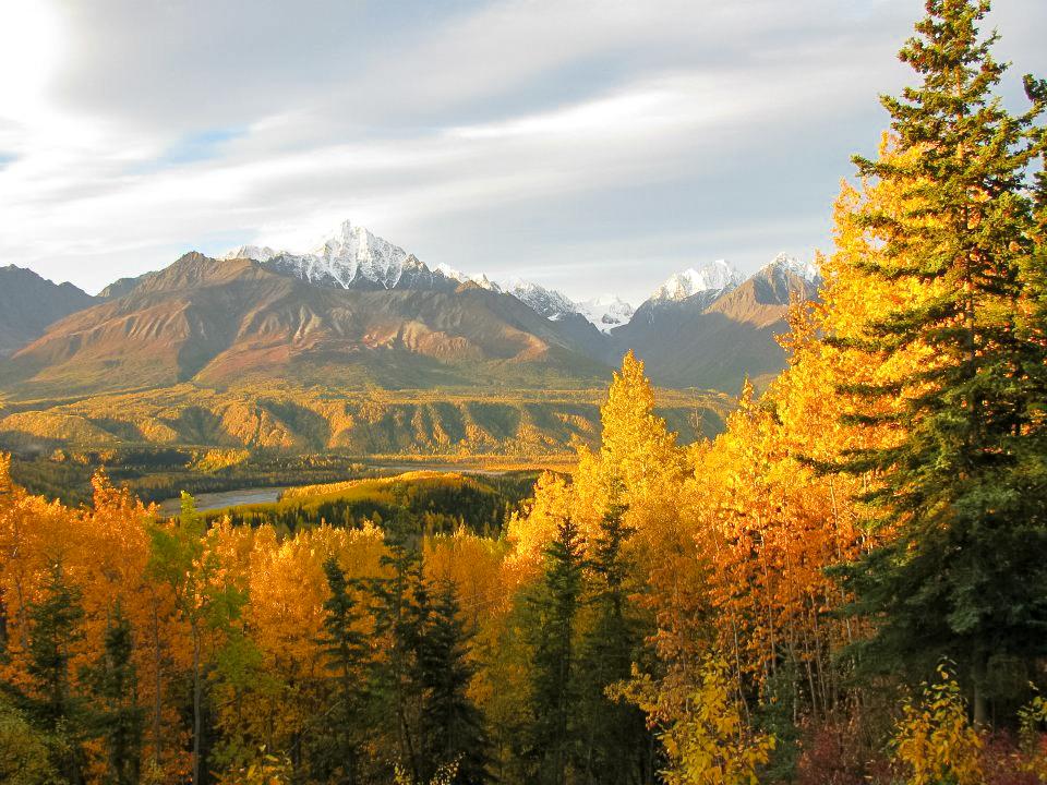 Homestead Guest Cabins beautiful autumn foliage