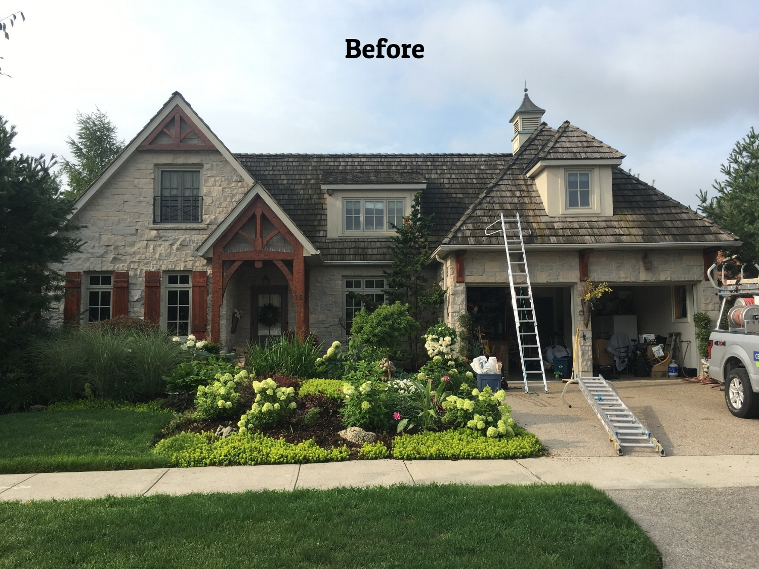 Cedar roof moss removal kitchener