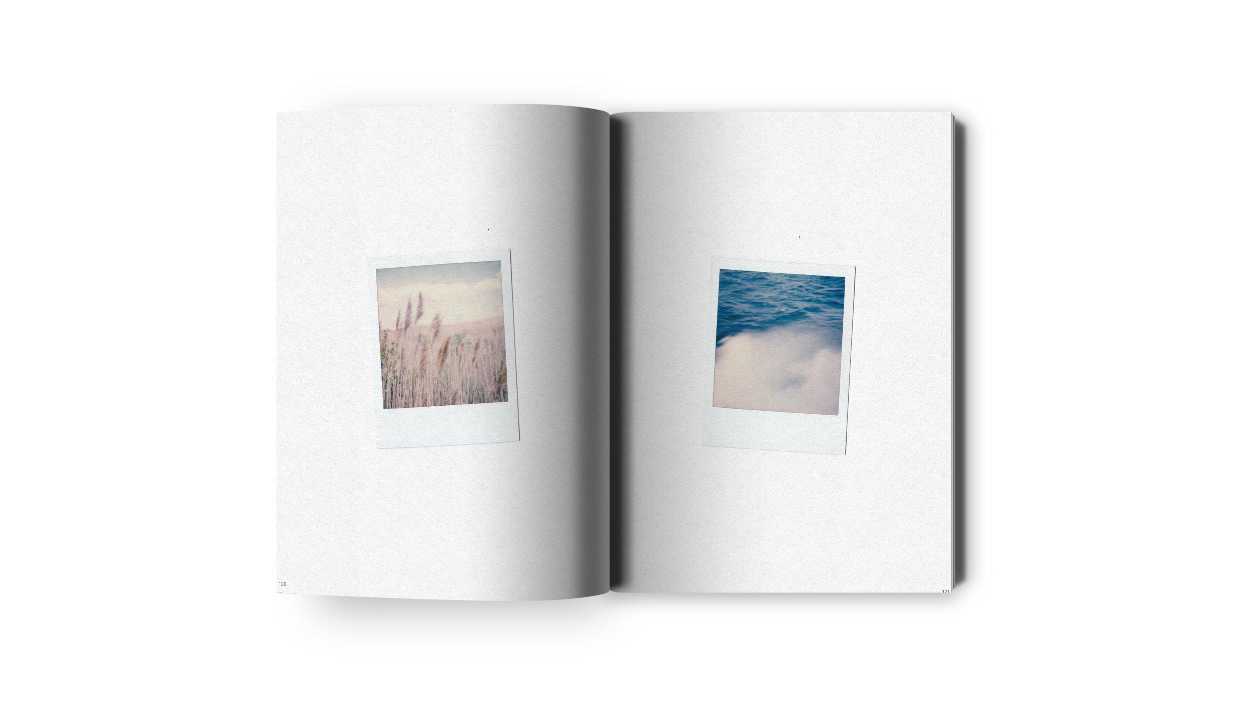 Portfolio Volume 03 Pages 120-121.jpg