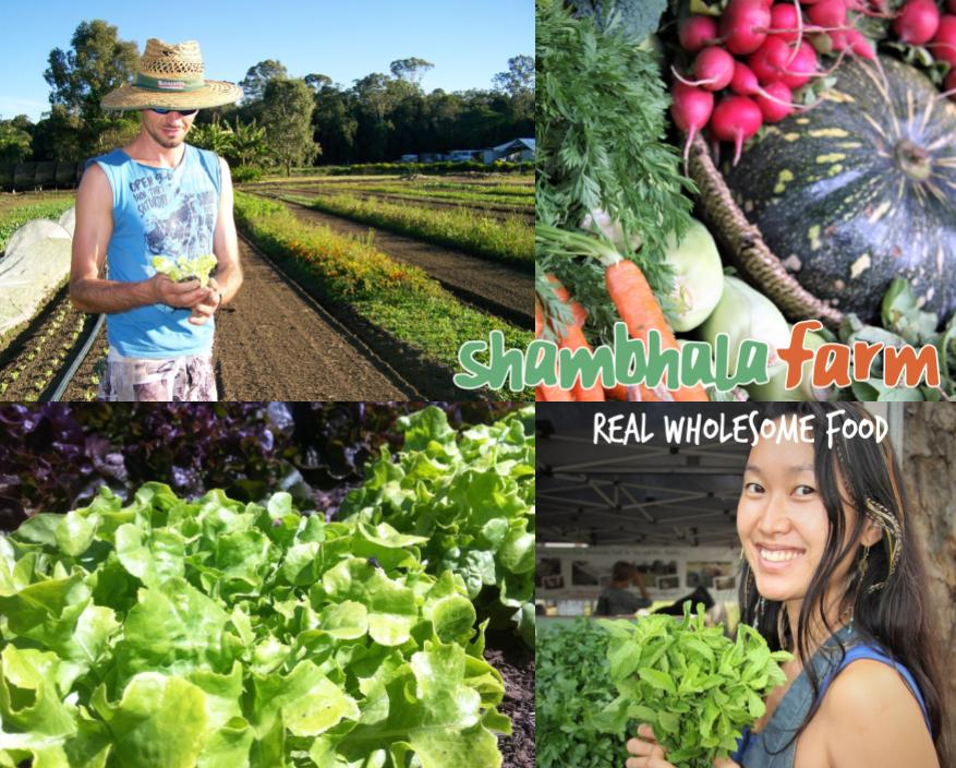 Shambhala Farms - Shambhala Farm's FarmBox is about Real Wholesome Food on your doorstep.Access fresh produce grown as sustainably as possible, as locally as possible. Produce is grown partially at Noosa Hinterland's Shambhala Farm, as well as accessed from our network of Sustainable Food Hub growers. Produce is grown with a variety of sustainable methods using principles of ecology and biological controls that replenish soils, and are ethical, responsible & practical, and most importantly, allow nature to be the key farmer.FarmBox groceries bring wholesome nourishment to your pantry; from the basics like milk, sourdough bread and eggs, to fermented health kicks like sauerkraut and kombucha.With easy online ordering, complete your weekly order by 10am Wednesday and start cooking from Friday night when your FarmBox arrives on your doorstep.Join Shambhala Farm's community of 500 Sunshine Coast households supporting local and Australian growers and producers who care about the earth and our health!Sign Up today to access our farm shop on the this linkShambhalaFarmSignUp
