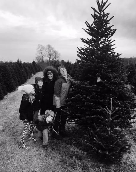 tree2017.jpg