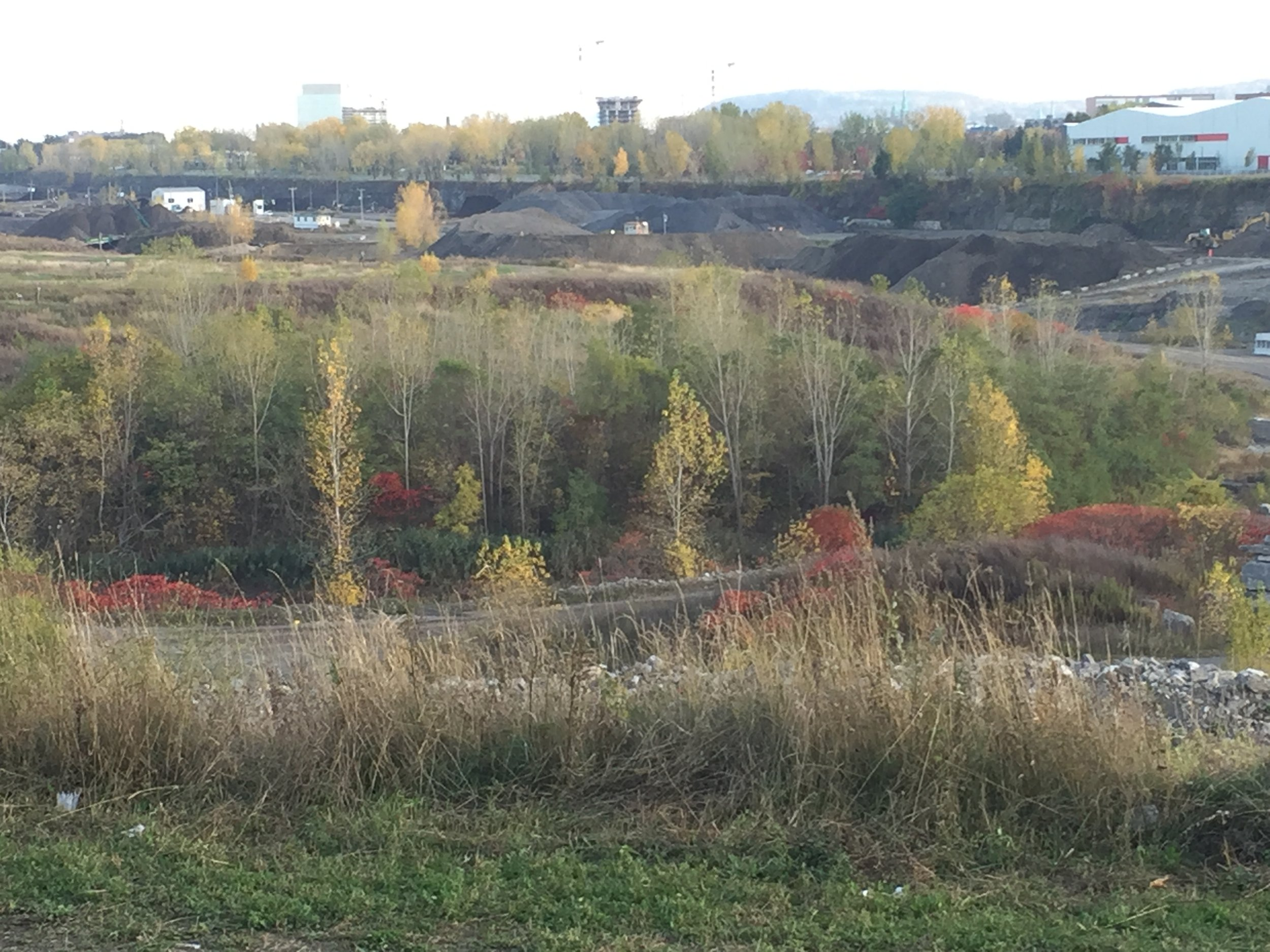 Complexe Environnemental de Saint-Michel, in the Fall