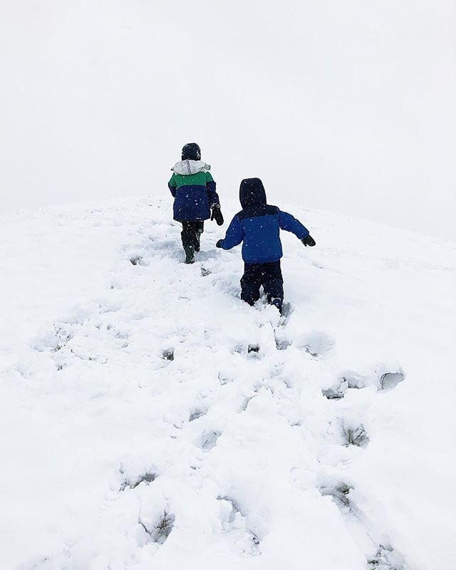 "Their very own snowy day ❄️⛄️⛄️ We've read the kids book ""The Snowy Day"" by Ezra Jack Keats at least once a day since Christmas and my boys were stoked when we got a massive snowfall this week and they got to experience the magic firsthand. • • • • • • #makemoments #ABMhappylife #wheretofindme #folkgood #cutest_kiddies #booknerd #becauseofreading #ohheymama #snowyday #snow #magicofsnow #snowday #magicofchildhood #inbeautyandchaos #lovelysquares #chooselovely #childhoodunplugged #letthekids #letthembelittle #livethelittlethings #seeksimplicity #simplychildren  #documentlife #nothingisordinary #bestofmom  #thehappynow #thatsdarling #momswithcameras  #theartofslowliving #momentslikethis"