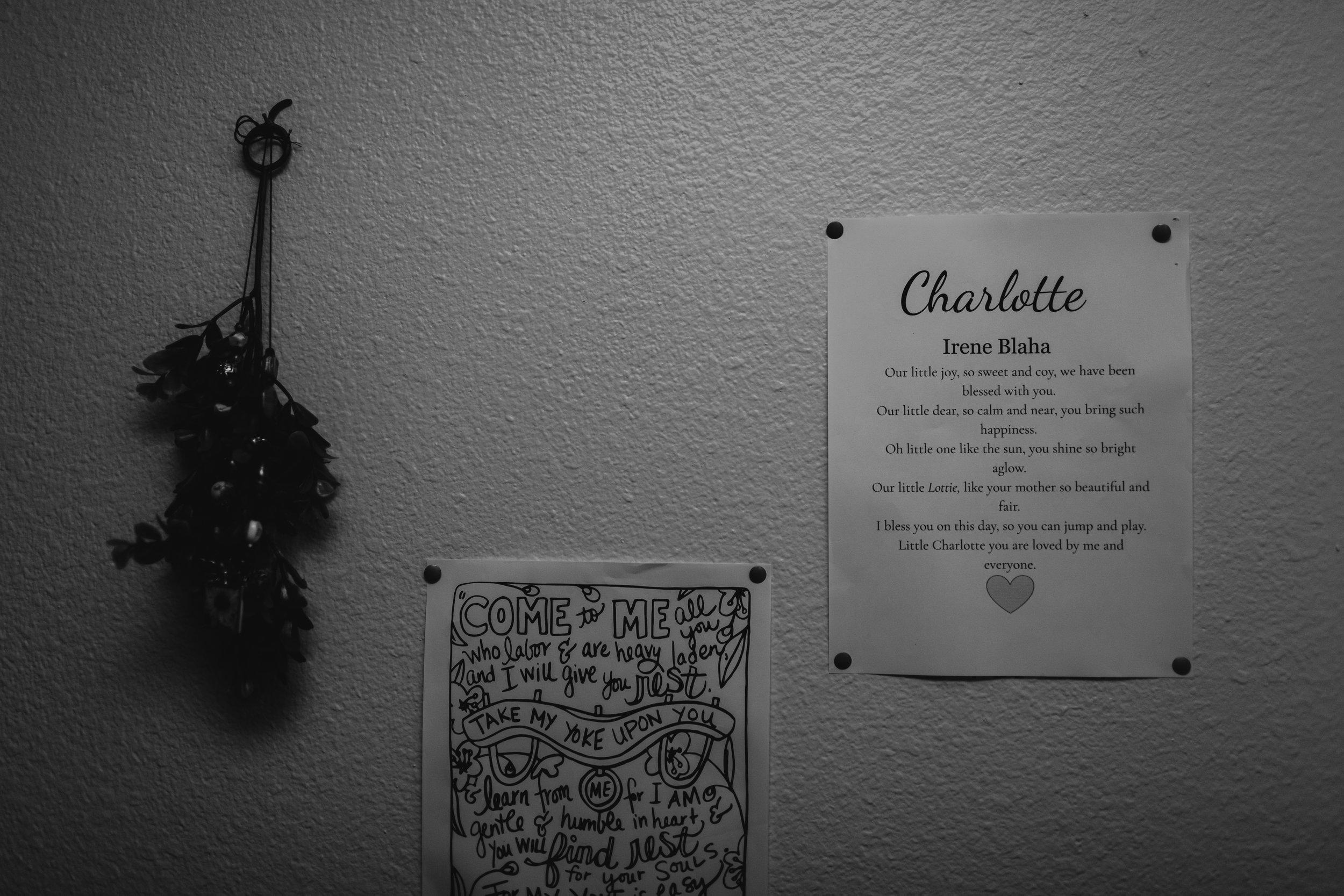 Charlotte-6.JPG