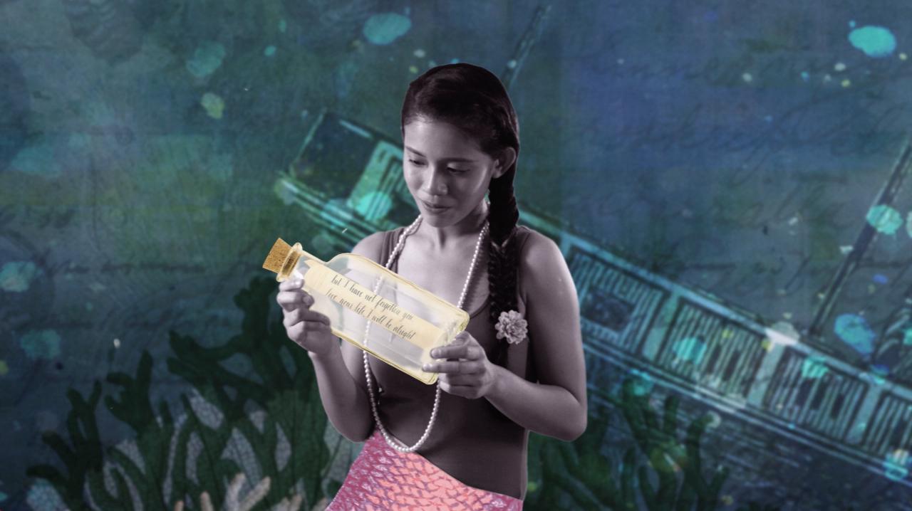 HTYS Mermaid.jpg