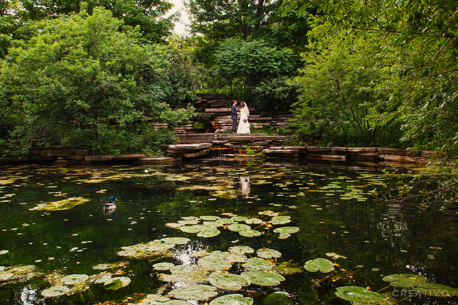 16. A nature elopement at a historic landmark lily pond in Chicago