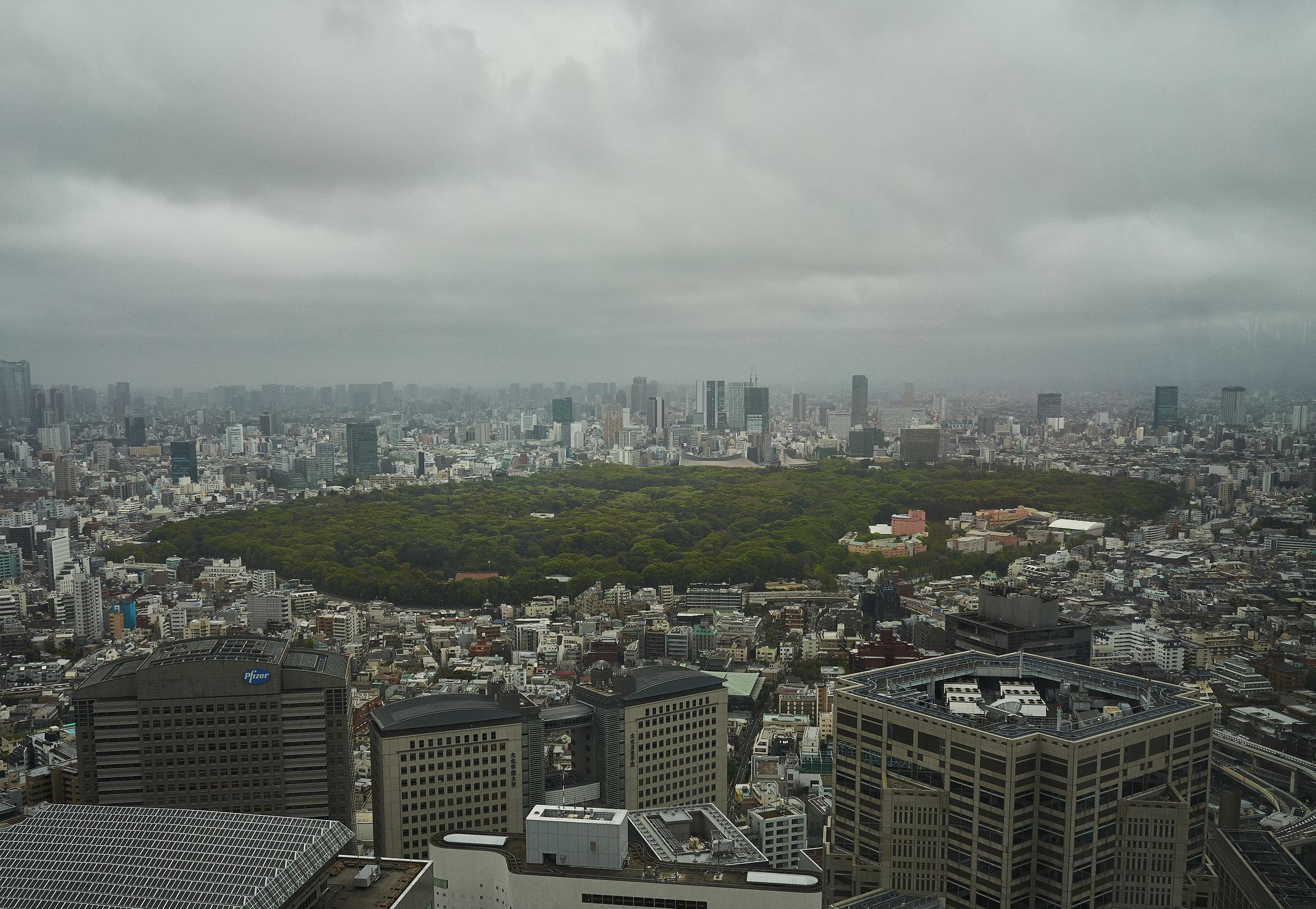 Tokio_Government Buidling_View_3_kom.jpg