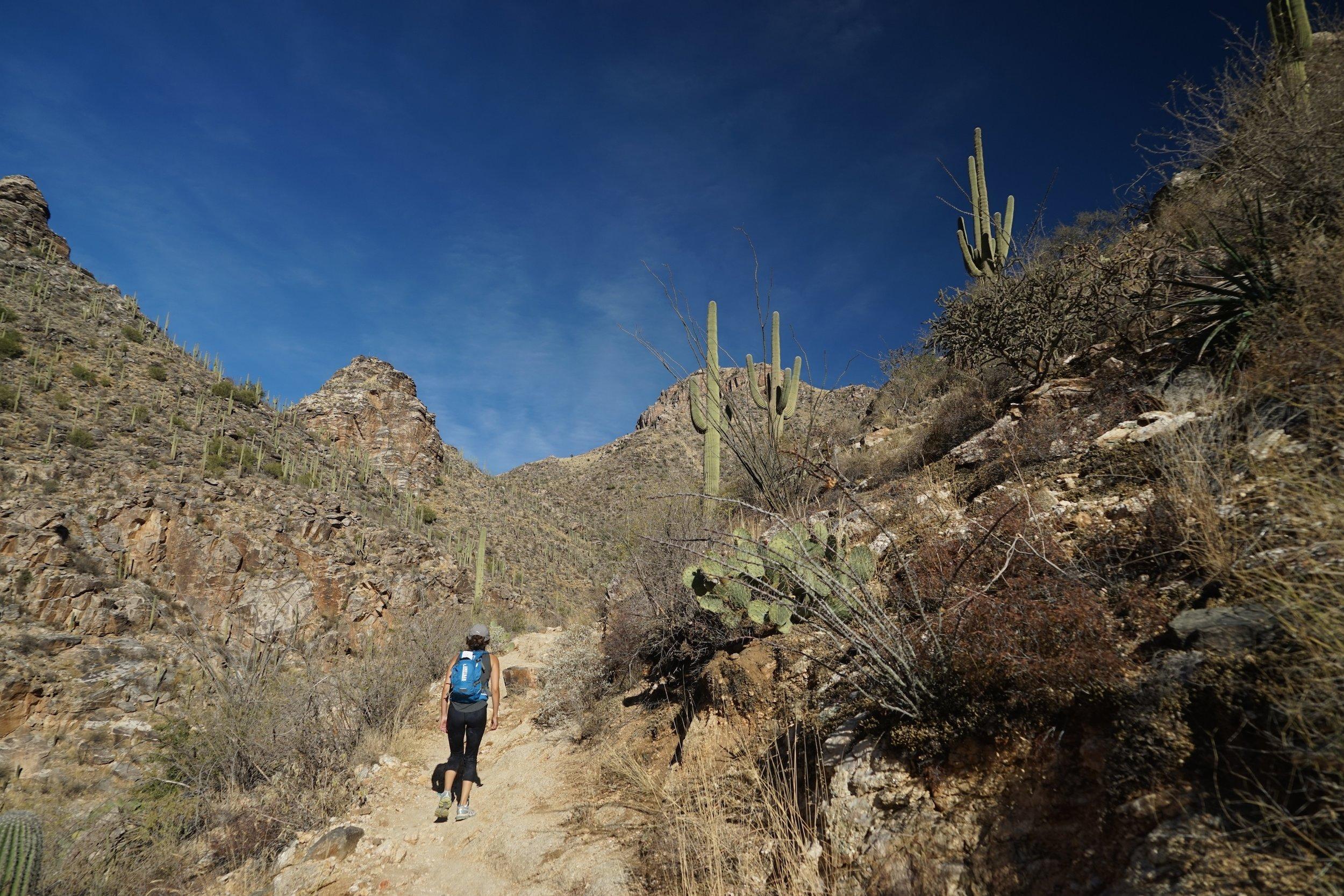 Seven Falls Hike