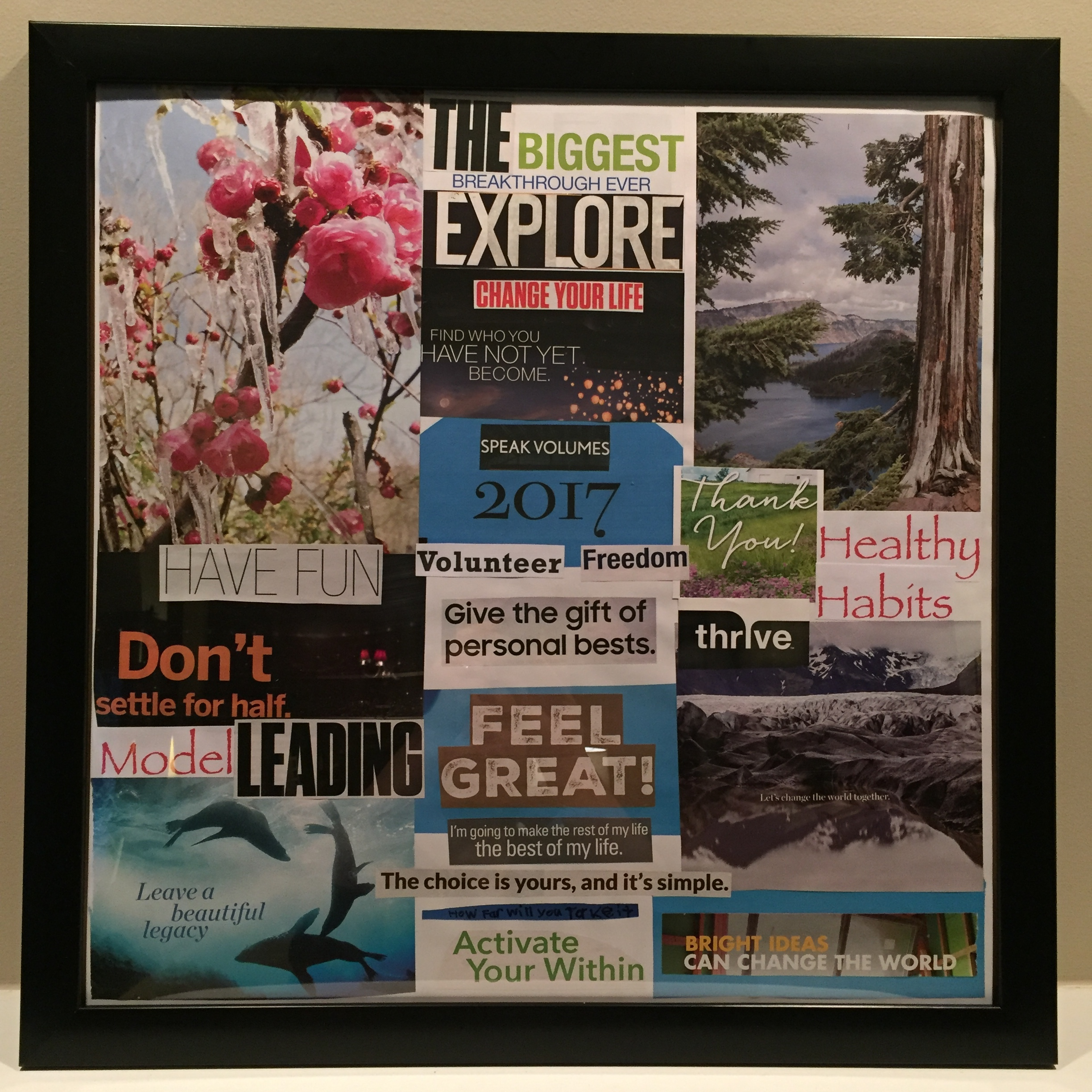 My completed 2017 vision board.