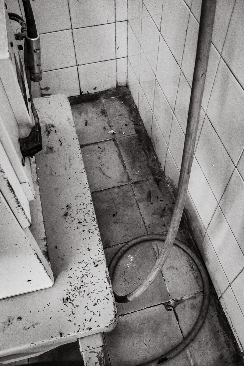 The surgical suite was also infested with insects and rodent droppings were everywhere, in no small part due to the abundant water supply on the floor.