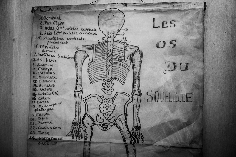 Anatomy chart in clinic.