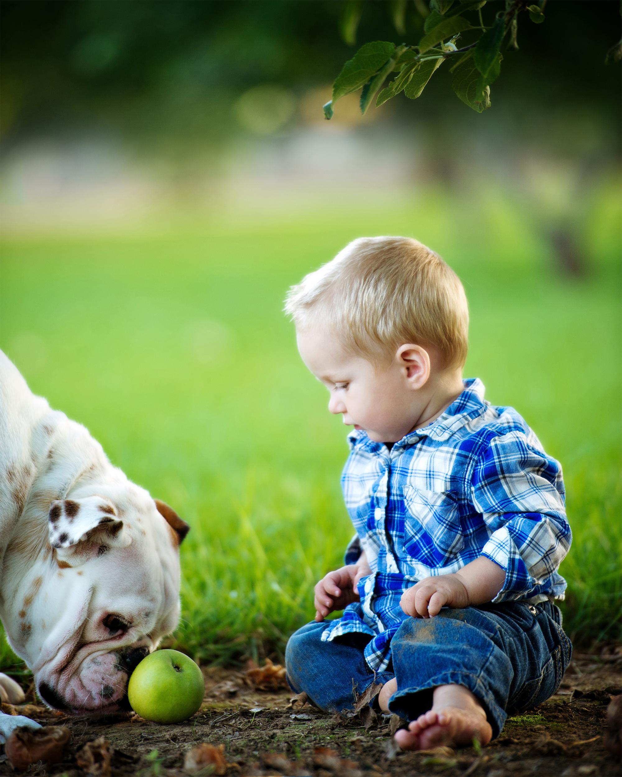 Jerb-dog-apple-website.jpg