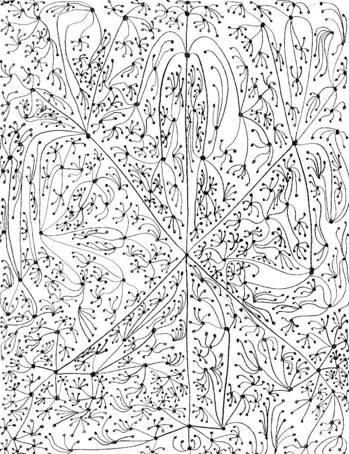 Cayley tree, q=6.