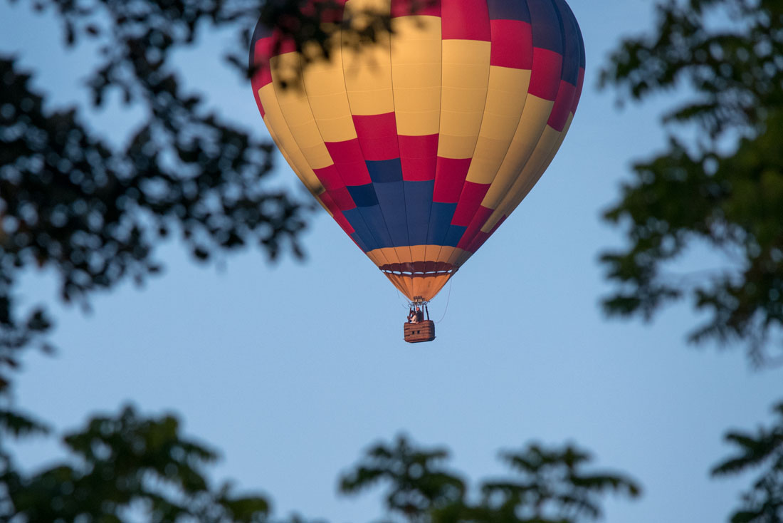 Bride & Groom in blue skies framed by trees in a hot air balloon!