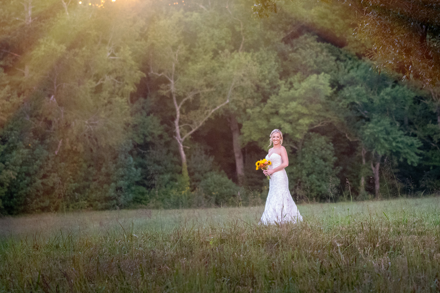 Bride in a Cades Cove Meadow during the golden hour.