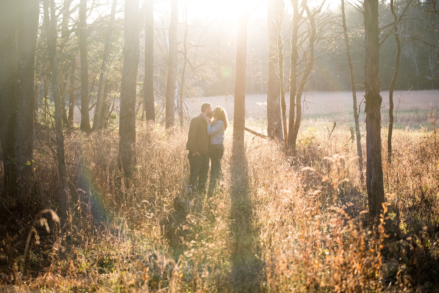 Engaged couple at the edge of forest in the golden hour.