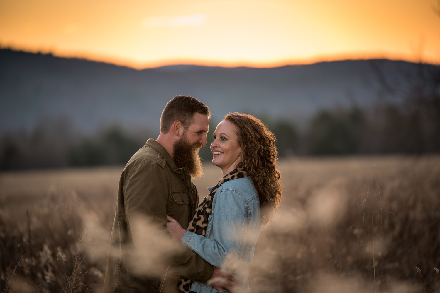 Engaged couple at sunset in a meadow in Cade's Cove