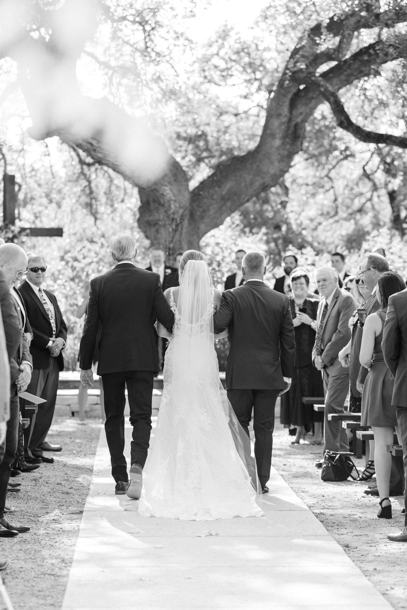San Antonio Austin Boerne New Braunfels Spring Branch Texas Wedding Engagement Photographer Photography Hill Country Texas Park 31 Wedding Summer Wedding Pink Navy Gold Elegant Chic Wedding San Antonio Austin Texas photographer 43